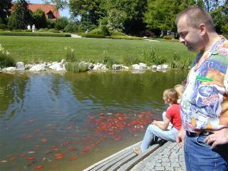 Treffen sued for Welche fische im teich